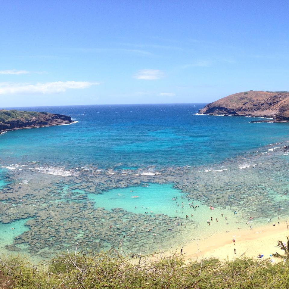 hanauma-bay-hawaii-carol-valiante-mahalo-dicas-viagem